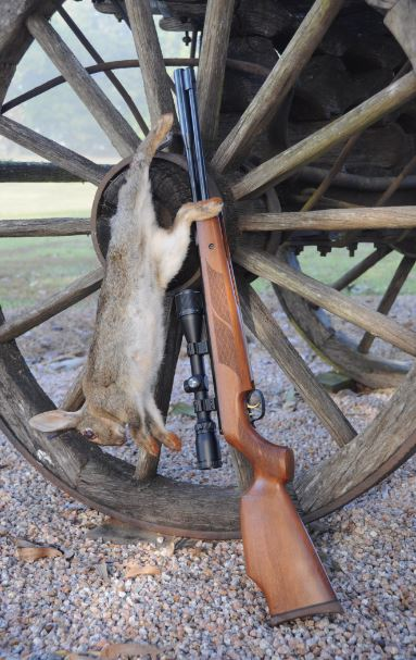 Aussiehunter Weihrauch review the HW 97 K is an effective rabbit rifle