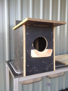 Aussiehunter nest box for Boobook Owls