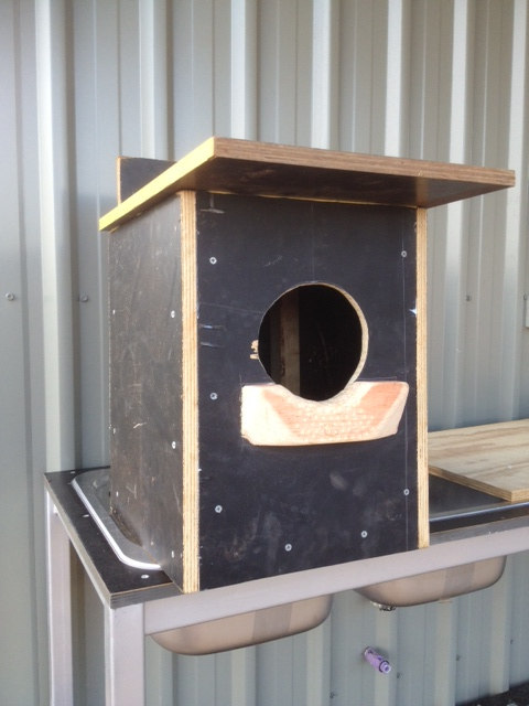 Owl Nesting Box uk Nest Box For Boobook Owls