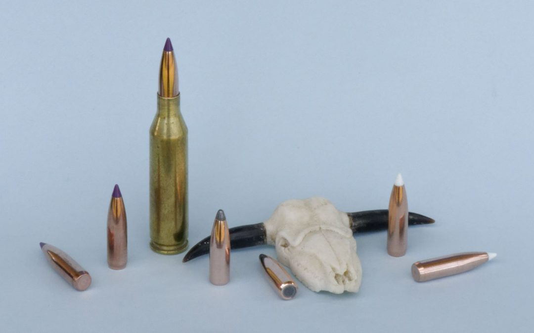 Nosler 243 Winchester projectiles