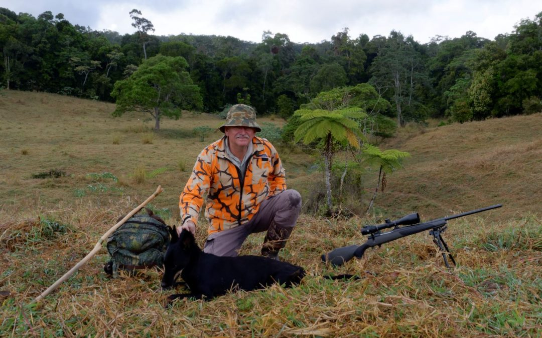 Hunter with large black wild dog from the FNQ jungle behind