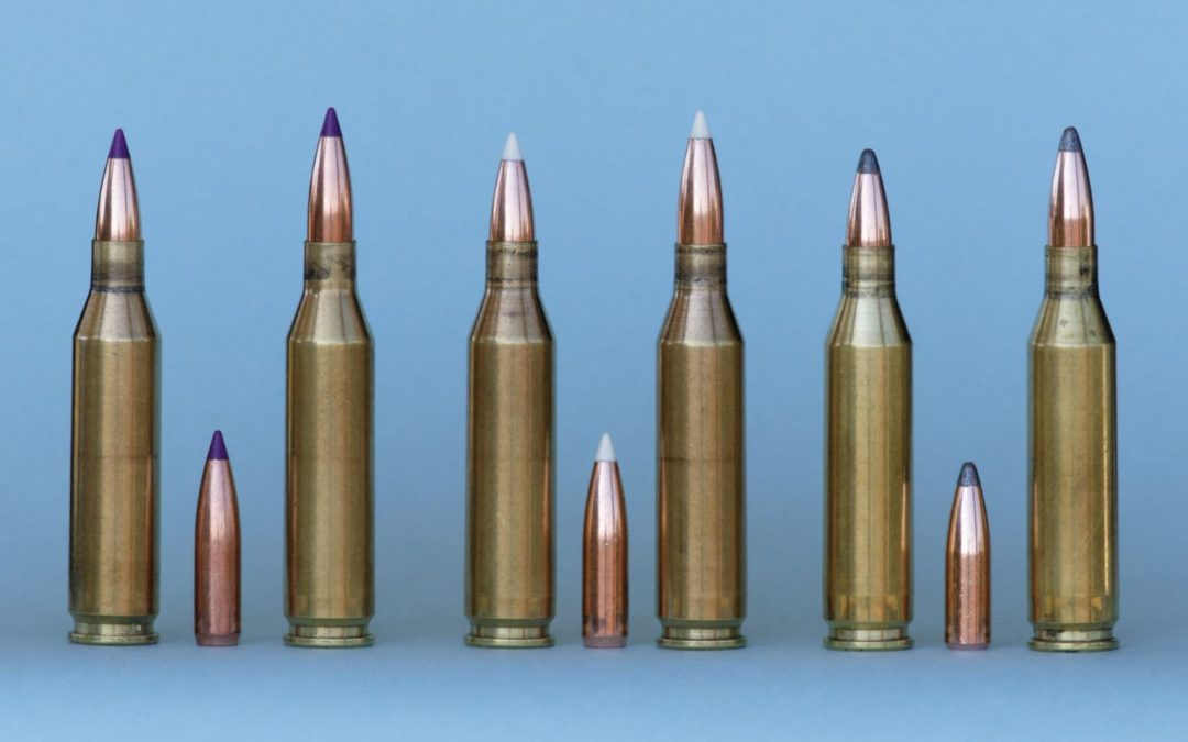 Handloading the 243 Winchester with Nosler Bullets