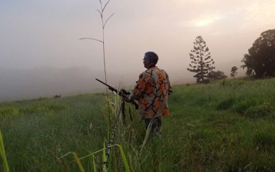 Wildlife and Hunting: How Hunting Saves the Environment
