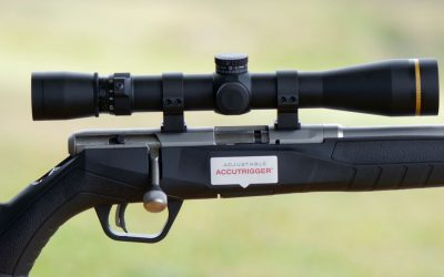 Savage B22 VFSS varmint rifle Review