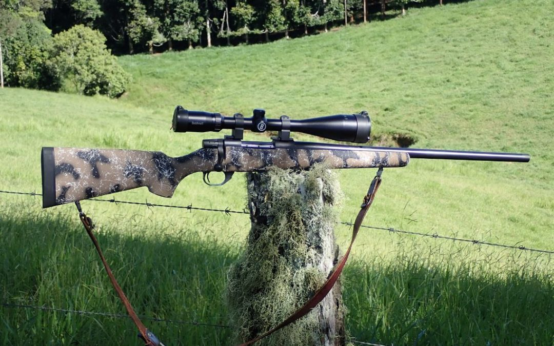 Weatherby's Vanguard HSP varmint rifle Review