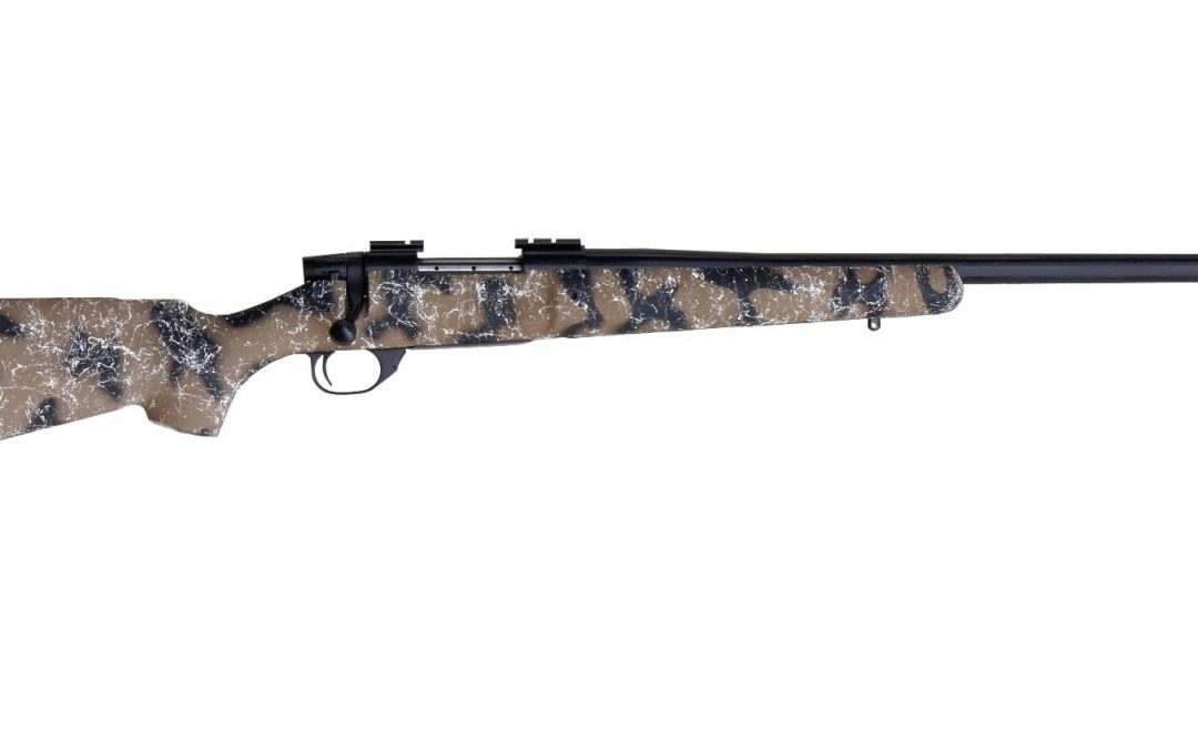 Weatherby Vanguard HSP varmint rifle review